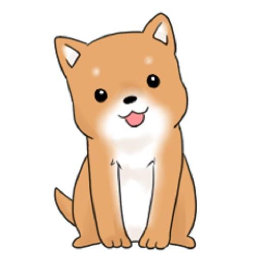 可爱的小柴犬